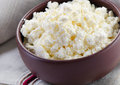 Cottage cheese fresh selective focus Royalty Free Stock Photos