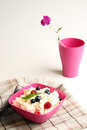 Cottage cheese in pink plastic bowl decorated mint and berry. Royalty Free Stock Photo