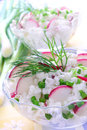 Cottage cheese with radish Royalty Free Stock Images