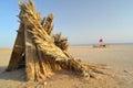 Cottage in chott el djerid salt lake tunisia Stock Image