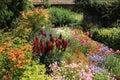 Cottage garden. Royalty Free Stock Photo