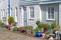 Cottage mews and potted plants photo of kent lovely flowers in courtyard garden Stock Images