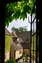 Cottage view through ivy Royalty Free Stock Photos