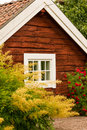 Cottage window surrounded by vegetation sweden green leaves yellow and red flowers skanninge Stock Image