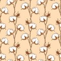 Cotton Flower Seamless Pattern in one continuous line drawing. White Blossom ball in sketch doodle style. Used for for Royalty Free Stock Photo