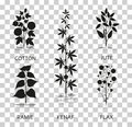 Cotton, ramie, kenaf, jude and flax plants with leaves, pods and flowers. Silhouette icons with reflection on