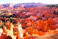 Coucher du soleil de bryce canyon Photo stock