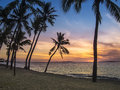 Coucher du soleil tropical de palm beach Photo libre de droits
