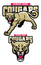 Cougar mascot vector of head can separate easily Stock Photo