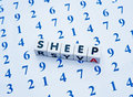Counting sheep text in black uppercase letters inscribed on white cubes placed upon an array of blue numbers a concept for Stock Photos