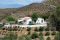 Country farm and orchards, Velez Malaga. Royalty Free Stock Photo