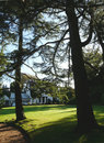 Country house through trees. Stock Image