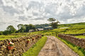 Country lane bordered by stone walls and fields. Stock Images