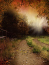 Country lane with leaves Royalty Free Stock Photo
