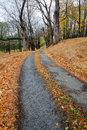 Country lane on a rainy day chester county pennsylvania Royalty Free Stock Photo