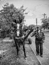 Country life in a romanian village Royalty Free Stock Photography