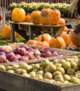 Country market display Royalty Free Stock Image