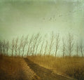 Country path in autumn fields with vintage texture Royalty Free Stock Images