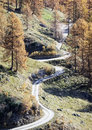 Country road at the alps Royalty Free Stock Photography