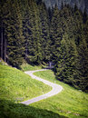 Country road at the alps Stock Image
