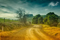 Country road in australia dirt and farmland the outer leongatha district victoria Stock Images