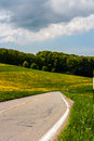 Country road in colorful landscape Royalty Free Stock Photos