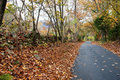 Country road leading beside rock wall in fall. Stock Images