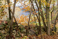 Country road leading beside rock wall in fall. Royalty Free Stock Image