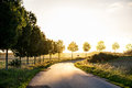 Country road  leading to the autumnal sunset light, concept of Royalty Free Stock Photo