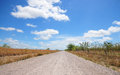 Country road lonely dirt with a beautiful blue sky and white puffy clouds Stock Image