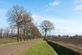 Country road in the Netherlands with farmland Stock Photography