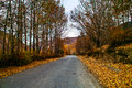 Country road photo of in xinduqiao sichuan china Stock Photography