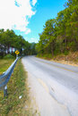 A country road running through green fields winding road Royalty Free Stock Images