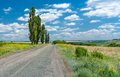 Country road in rural ukrainian area at summer season Stock Image