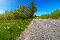 Country road in summer with rough asphalt low angel sweden Royalty Free Stock Image