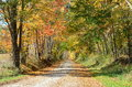 Country road on a sunny Autumn day Royalty Free Stock Photo