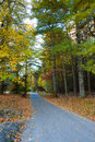 Country road surrounded by fall colors and leaves in autumn Royalty Free Stock Photography