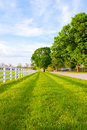 Country road surrounded the horse farms at spring Stock Photos