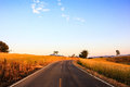 Country road in thailand with blue sky Royalty Free Stock Image