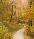 Country road with trees turning during fall Royalty Free Stock Photography