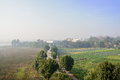 Country road through verdant farmland in sunny foggy winter morn morning chengdu china Royalty Free Stock Images
