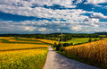 Country road and view of rolling hills near Cross Roads, Pennsyl Royalty Free Stock Photo