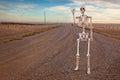 Country Roads Skeleton Royalty Free Stock Photo