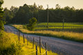 Country roads in summer evening Royalty Free Stock Photo