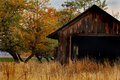 A country shed in autumn an old sitting grassy meadow surrounded by fall colored trees shallow depth of field Stock Images