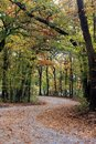 Country Trail in Fall Royalty Free Stock Photo