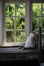 Country Window Royalty Free Stock Photo