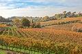 Countryside of Emilia Romagna, Italy Royalty Free Stock Photo