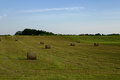 Countryside landscape with bales of straw Royalty Free Stock Photo