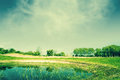 Countryside landscape with a pond high resolution photo in best quality Royalty Free Stock Image